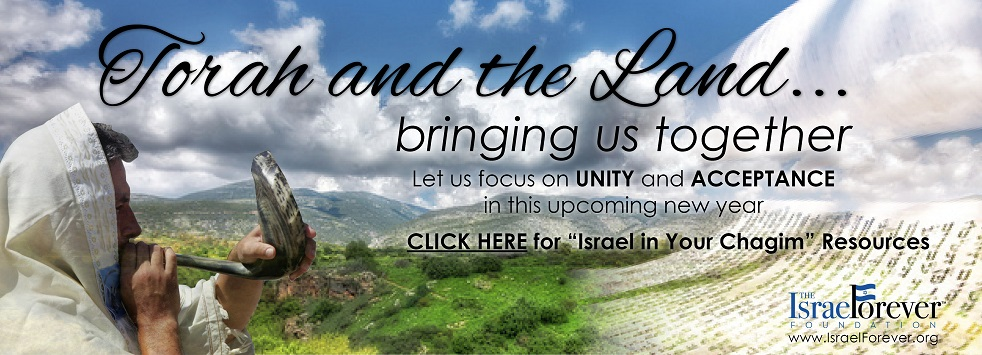 Your Israel Connection for the Chagim