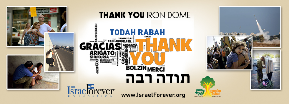 Thank Iron Dome Virtual Dinner