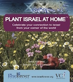 Plant Israel at Home™ Seed Packets