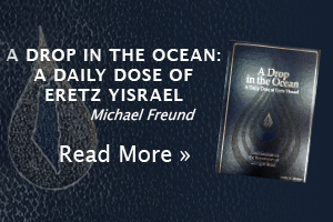 A Drop in the Ocean: A Daily Dose of Eretz Yisrael  by Michael Freund