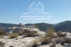 VCIRewards: Midbaron Adventures