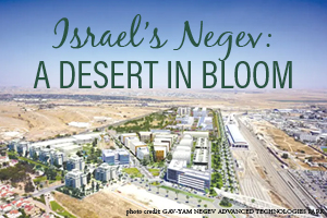 Israel's Negev: A Desert in Bloom