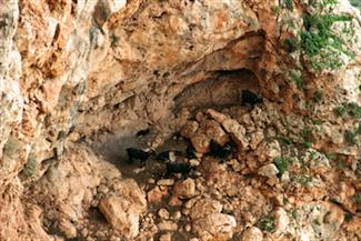Keshet Israel