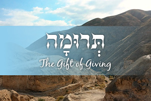 The Gift of Giving | Parashat Terumah