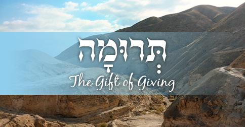 The Gift of Giving | Parashat Terumah: The Israel Forever Foundation
