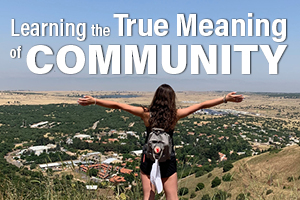 Learning the true meaning of Community