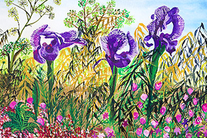 The Gilboa Iris Blooms for Readers