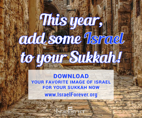 Add Some Israel To Your Sukkah