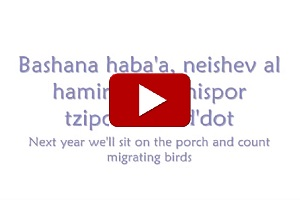 Next Year - B'Shanah Ha'Baah