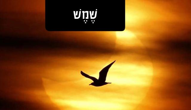 Forever Follow the Sun - L'Olam B'ikvot HaShemesh - לעולם בעקבות השמש
