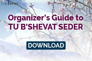 TEACH: ORGANIZERS GUIDE TO SEDER