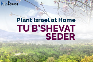 Tu B'Shevat Seder: A Celebration of Israel