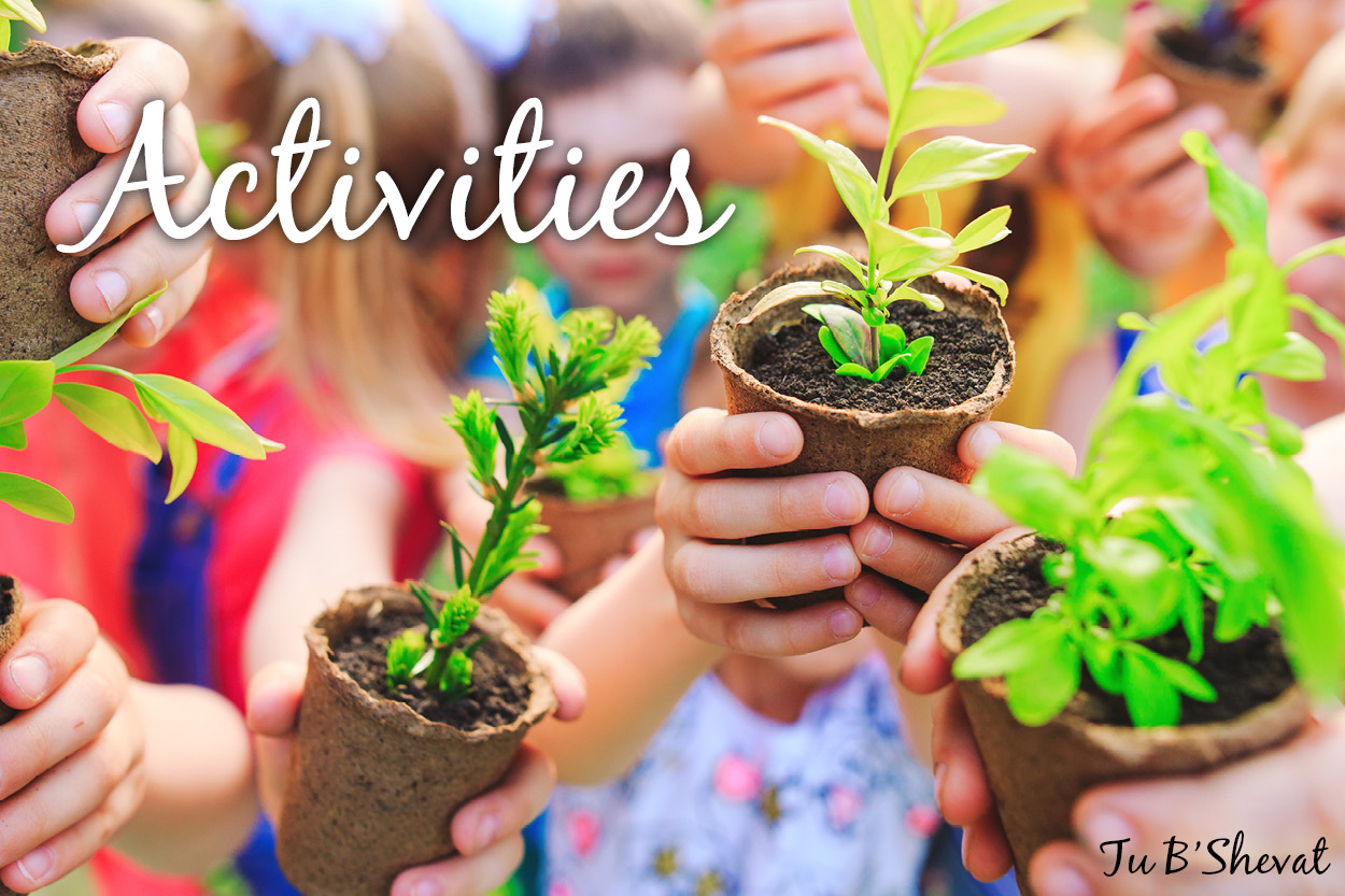 Tu B'Shevat Activities