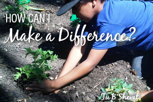 Tu B'Shevat Make A Difference