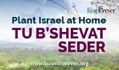 A Tu B'Shevat Seder - Emphasizing the Israel Connection