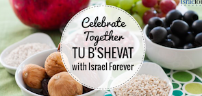 Cooking Israel For Tu B'Shevat