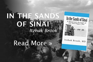 Sands of Sinai by Dr. Itzhak Brook