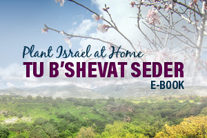 The Plant Israel at Home™ Tu B'Shevat Seder
