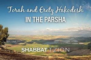 Torah and Eretz Hakodesh in the Parsha