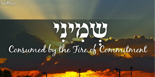 Parshat Shemini - Consumed by the Fire of Commitment