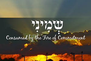 Consumed by the Fire of Commitment - Parshat Shemini