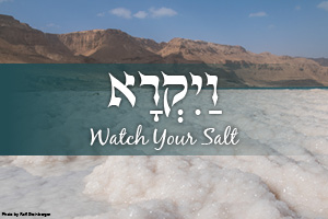Watch Your Salt: Parashat Vayikra